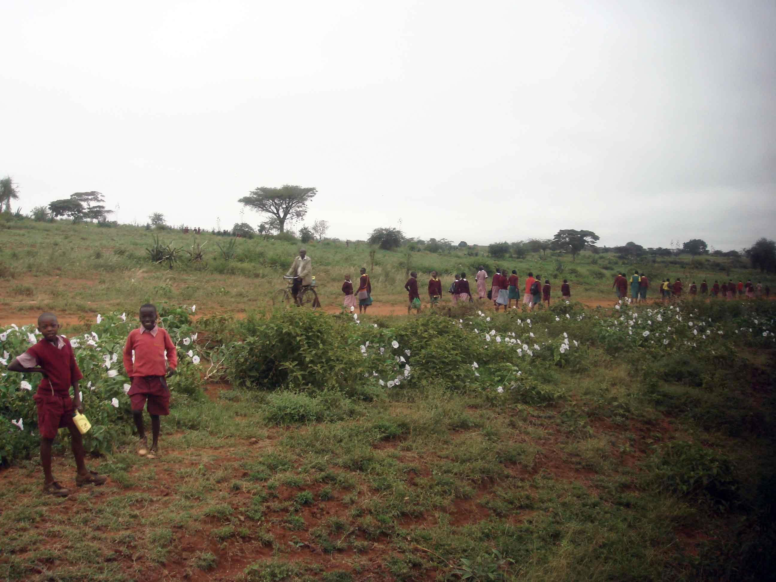 肯尼亚的内罗毕和蒙巴萨