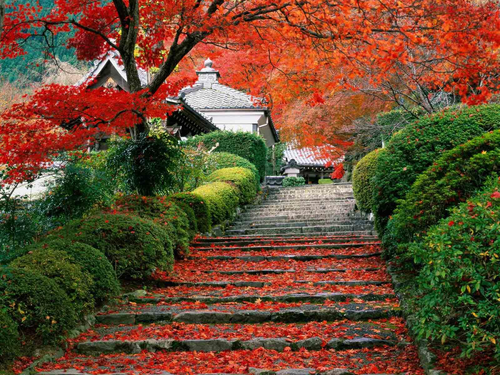 粉色童年梦想,日本旅行追忆篇:Part 2