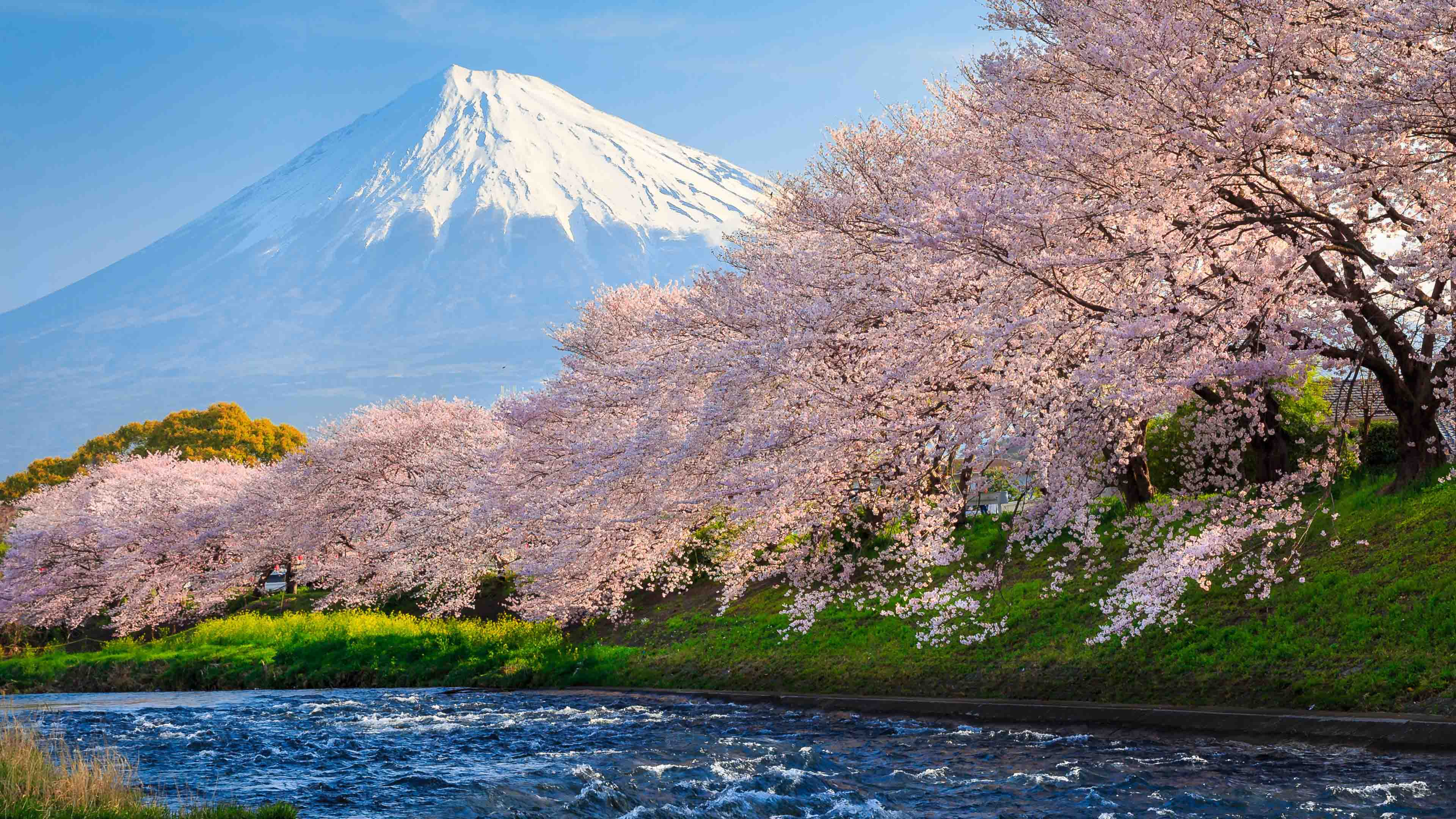 粉色童年梦想,日本旅行追忆篇:Part 1