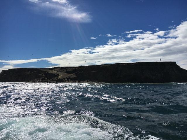 Marta Island, Punta Arenas, Chile