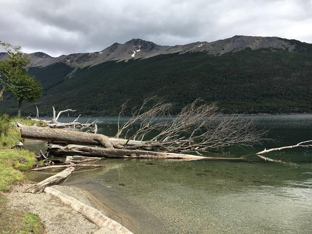 Blue Sky and Wine, Lago Fagnano, Tierra del Fuego, Ushuaia, Argentina
