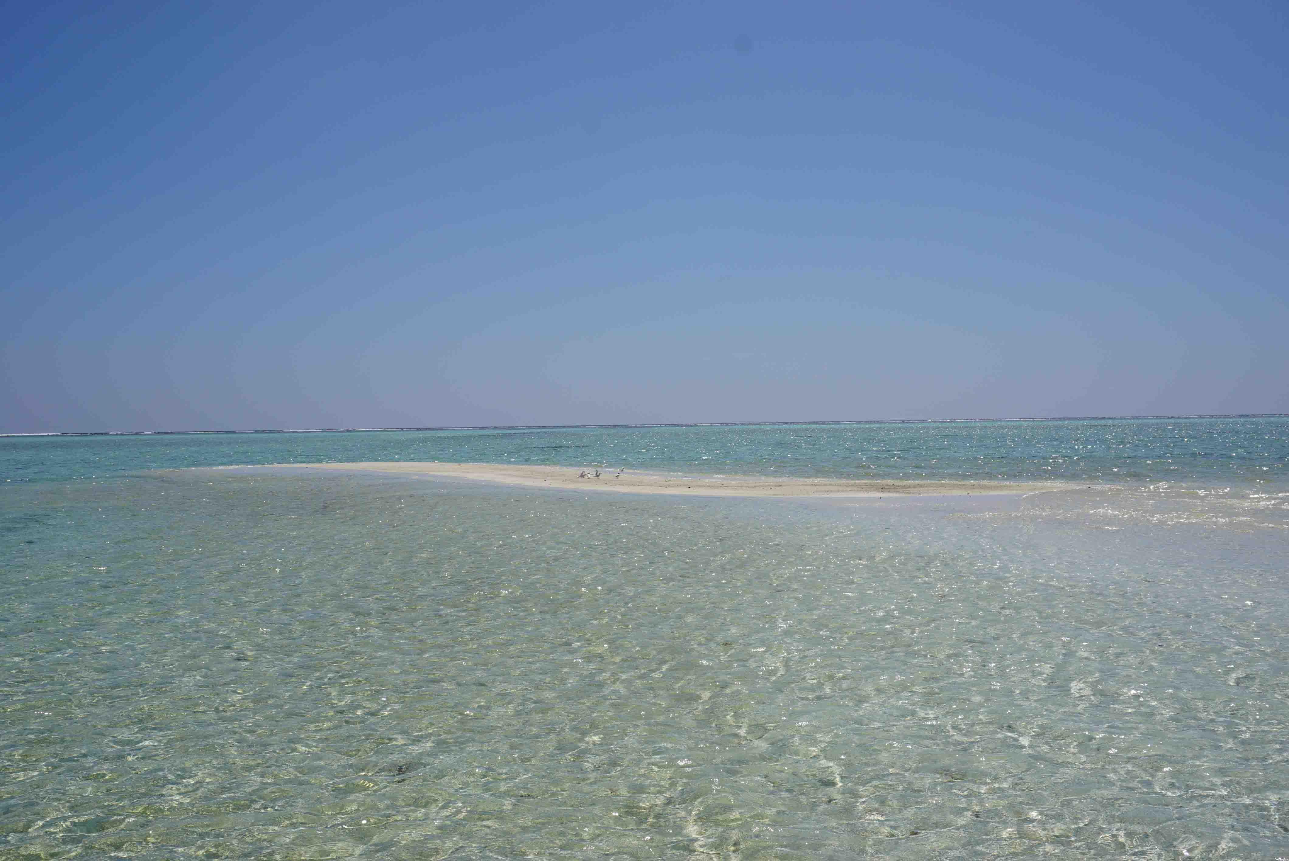 Relax in Maldives ep 2: The Half Day Sandbank Fun in Maldives