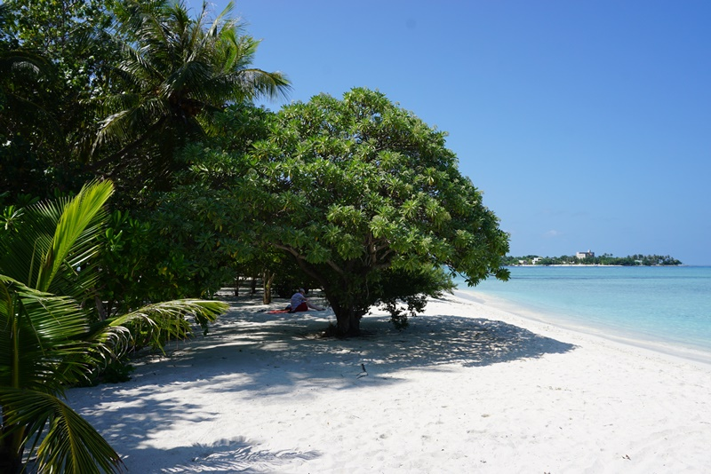 Relax in Maldives ep 4: Viligili Island Trip and last day on Hulhumale Island