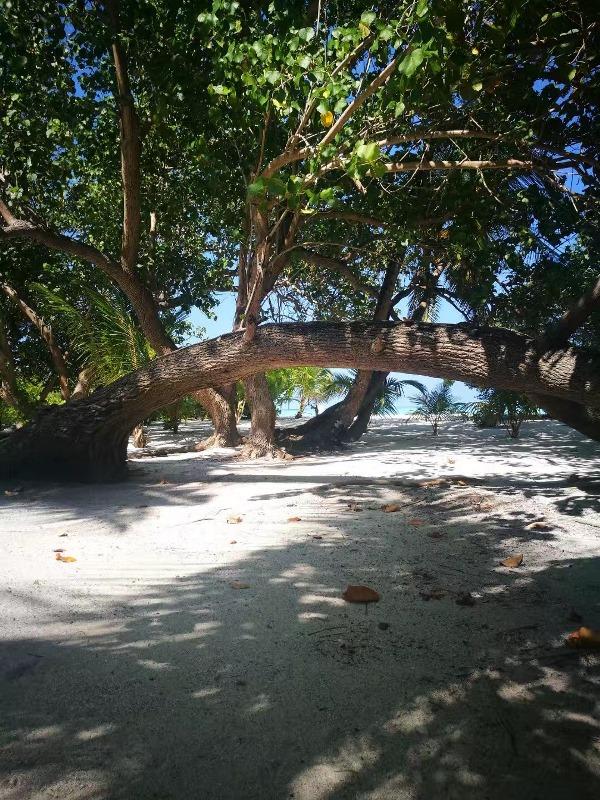Viligili Island, Maldives, Blue Sky and Wine
