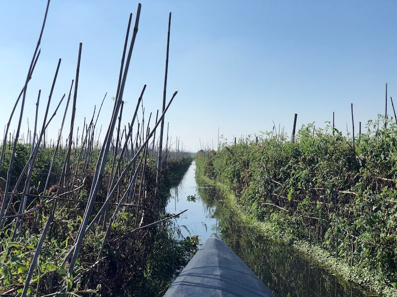 Inle lake floating garden inle lake myanmar blue sky and wine