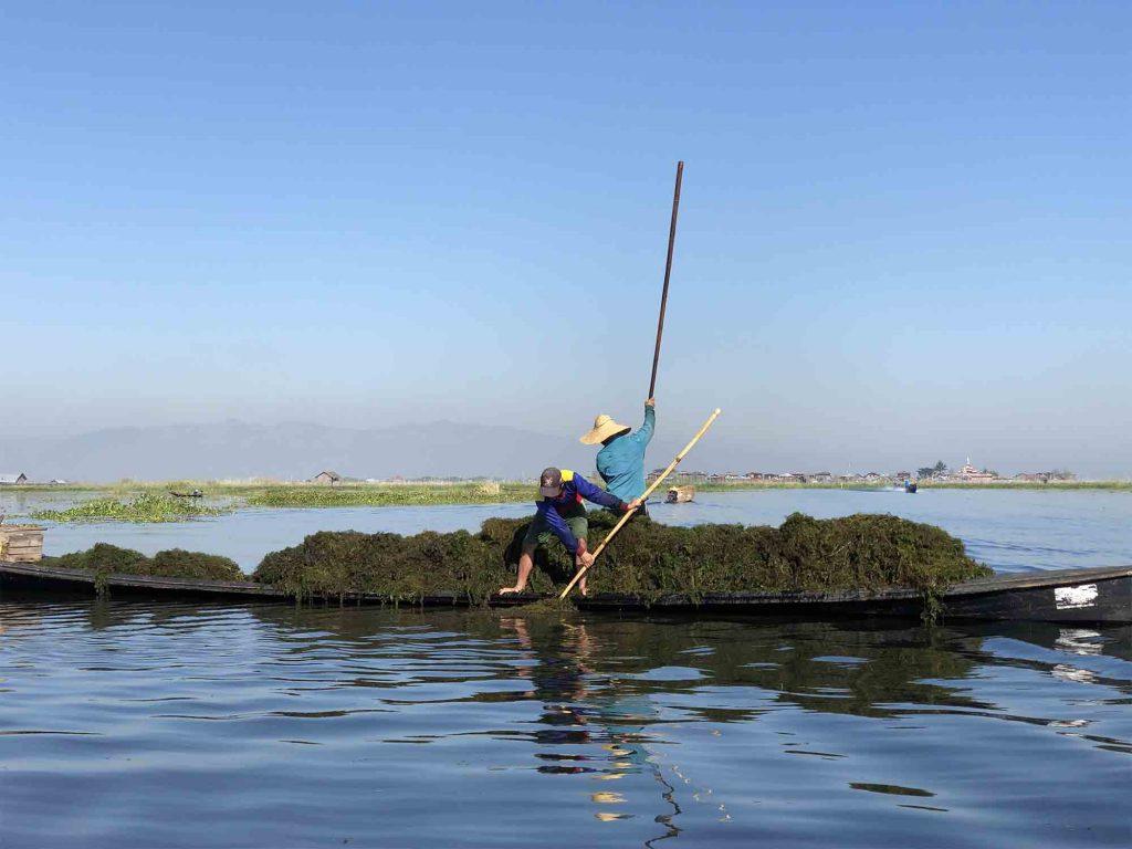 Working fishermen Inle Lake Myanmar, Blue Sky and Wine