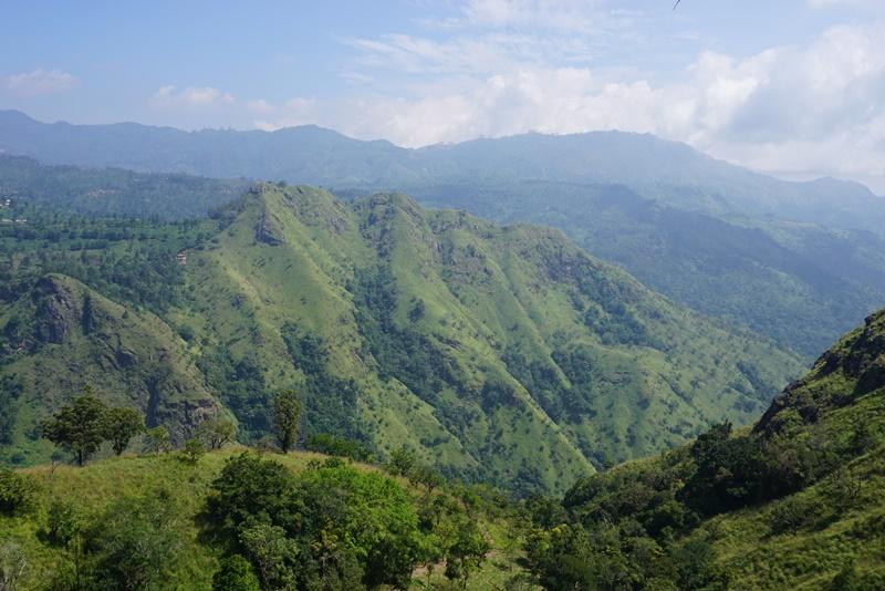 View from Ella's Rock, Sri Lanka, Blue Sky and Wine
