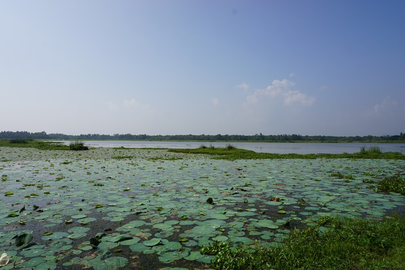 Tissa Lake, Tissamaharama, Sri Lanka, Blue Sky and Wine