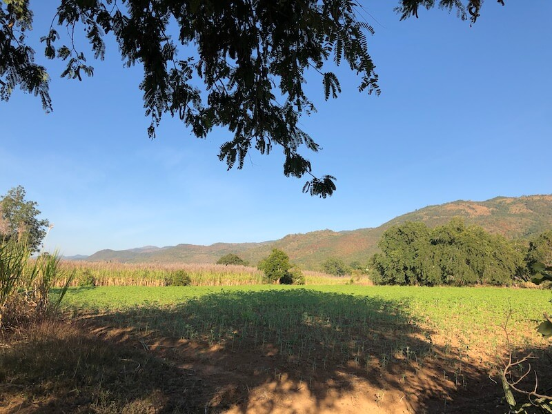 View from Mine Thauk, Inle Lake Myanmar, Blue Sky and Wine
