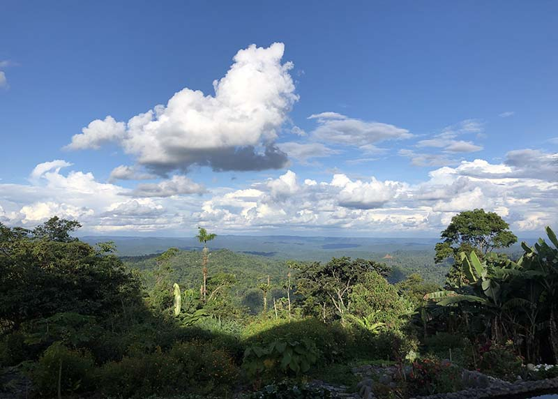 puyo amazon view ecuador, Blue Sky and Wine