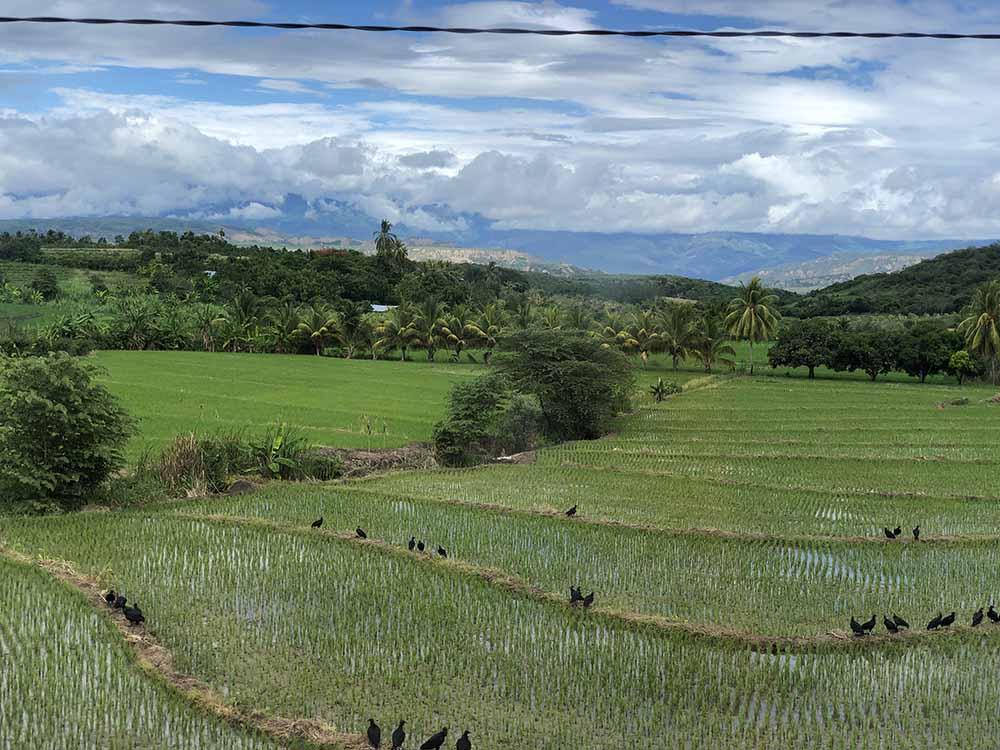 Jaen to La Balza bus window view, Blue Sky and Wine Travel Blog